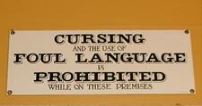 dr bawdy language